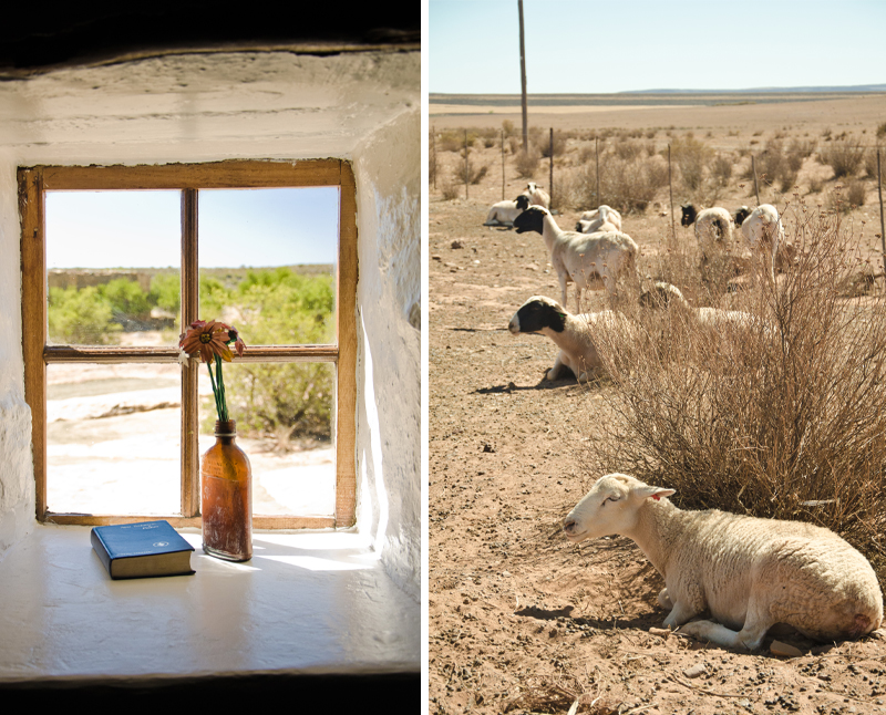 Papkuilsfontein, perfect Northern Cape Karoo guest farm accommodation