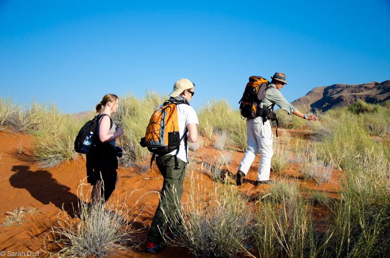 TokTokkie Walking Trail, NamibRand, Namibia