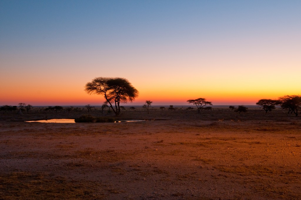 Sunset, Etosha National Park, Namibia