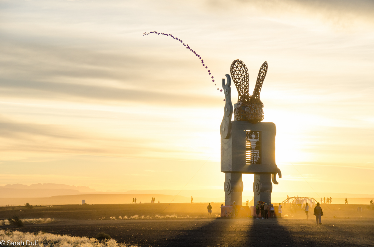 A guide to surviving AfrikaBurn