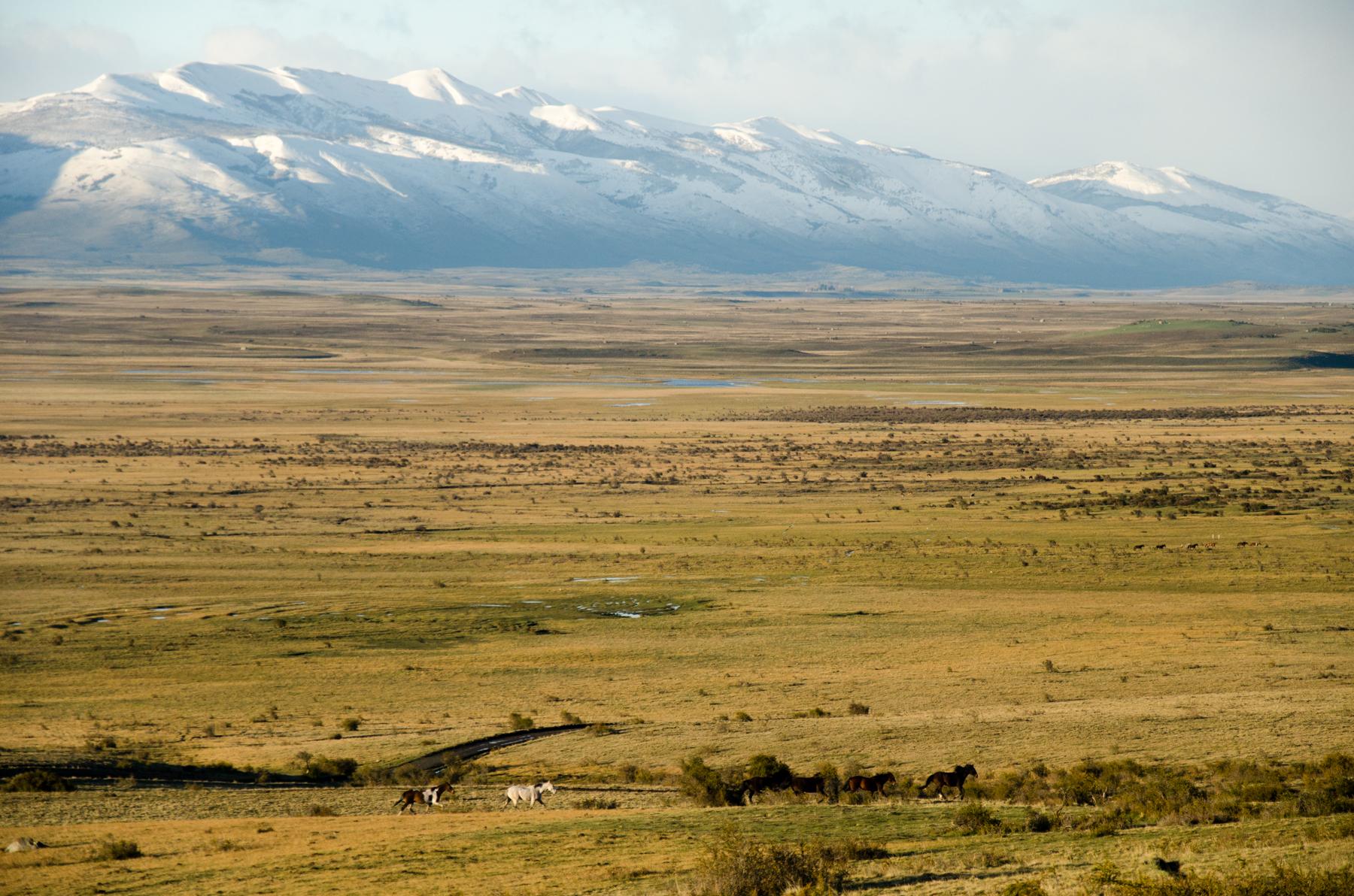 Eolo lodge, El Calafate, Patagonia