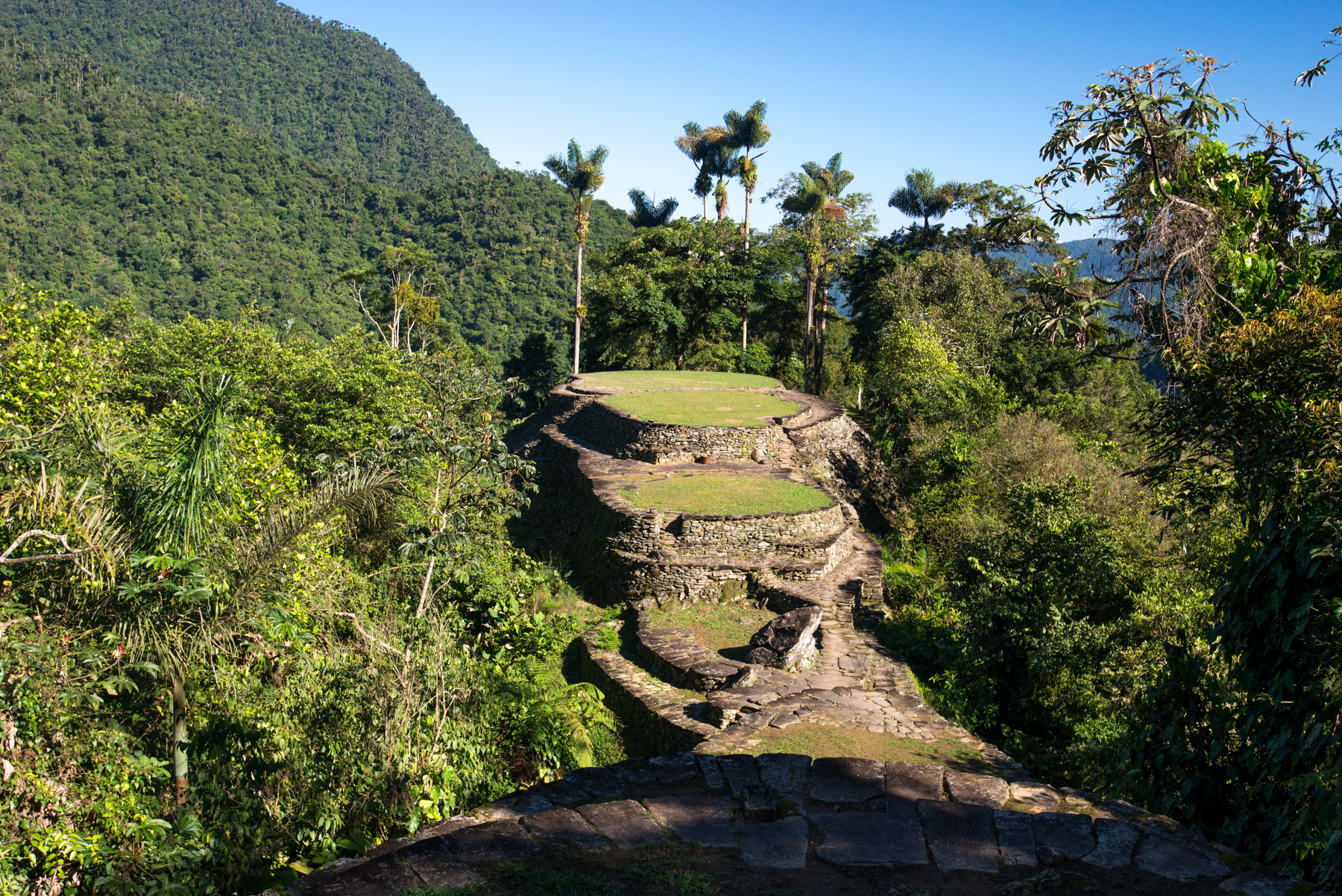 Colombia's Lost City or Ciudad Perdida
