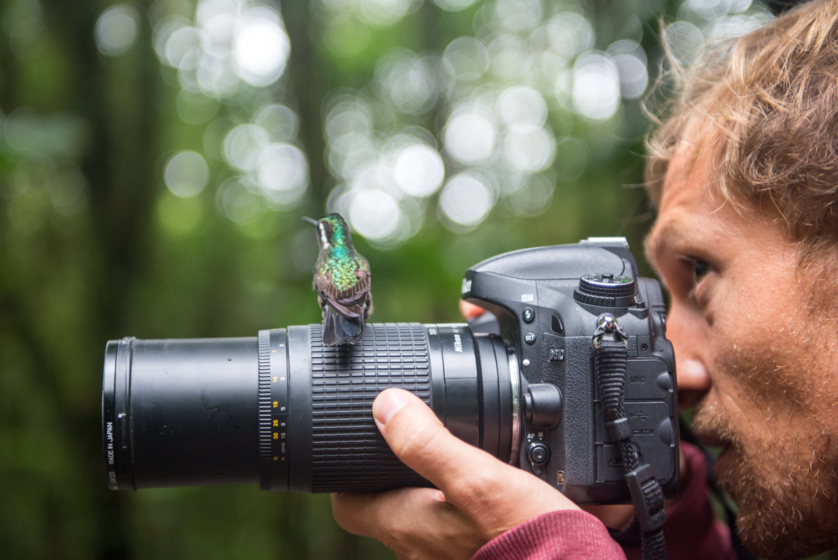 Shooting hummingbirds in Costa Rica