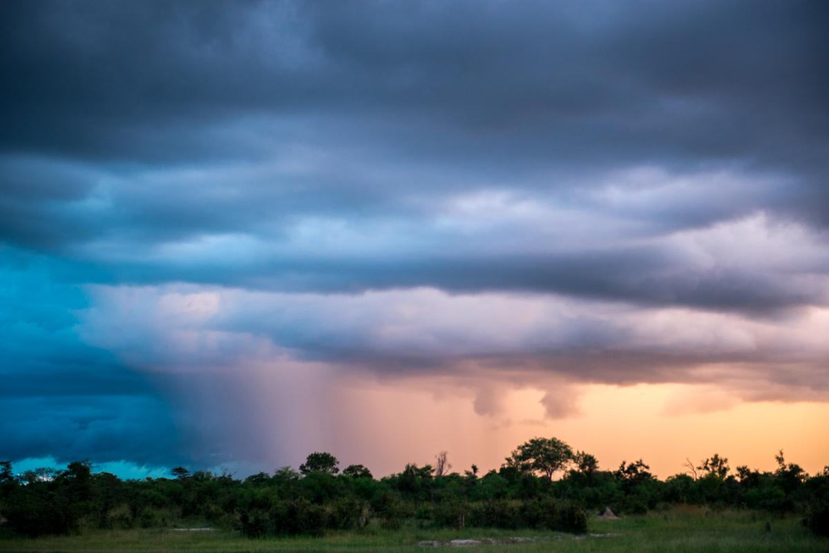 Elephants Eye Hwange Zimbabwe-10