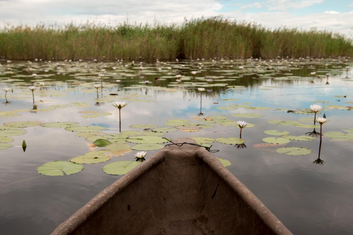 Okavango Delta mokoro ride Botswana